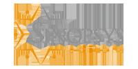 Logo Sinopsys